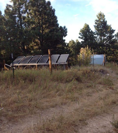 http://survivalist.com/wp-content/uploads/2016/05/Solar-panels-480x540.jpg