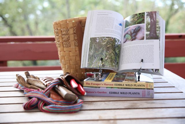 Samuel-Thayers-books-are-indispendable-for-the-wild-foods-forager